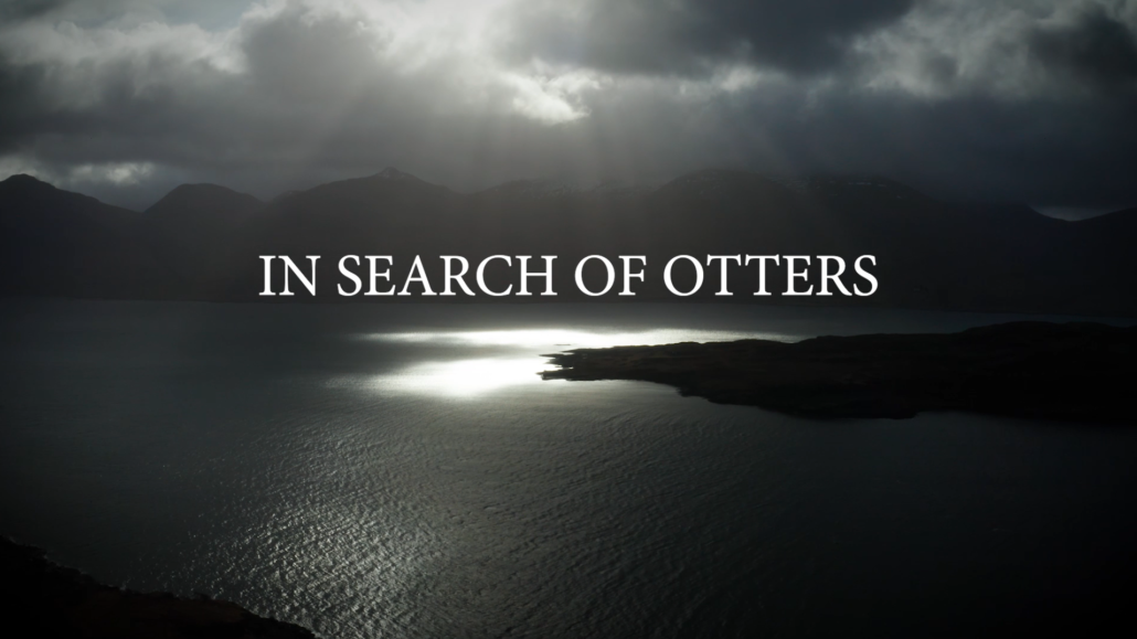 Ailsa Newton's film, In Search of Otters